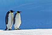 BRD 05 KH0044 01