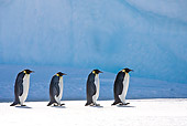 BRD 05 KH0051 01