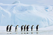 BRD 05 KH0052 01