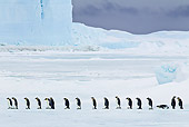 BRD 05 KH0054 01