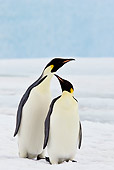 BRD 05 KH0055 01
