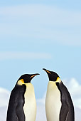 BRD 05 KH0056 01