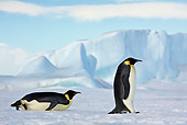 BRD 05 KH0060 01