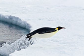 BRD 05 KH0063 01