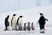 BRD 05 KH0065 01