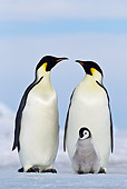 BRD 05 KH0066 01