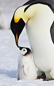 BRD 05 KH0071 01