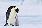 BRD 05 KH0072 01