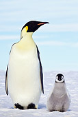 BRD 05 KH0078 01