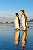 BRD 05 KH0083 01