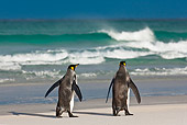 BRD 05 KH0085 01