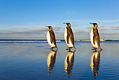 BRD 05 KH0088 01