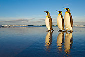 BRD 05 KH0090 01