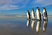BRD 05 KH0096 01