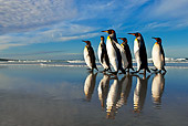 BRD 05 KH0097 01