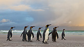 BRD 05 KH0099 01