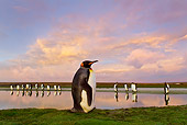 BRD 05 KH0107 01