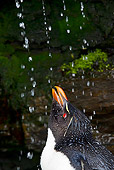 BRD 05 KH0127 01