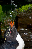 BRD 05 KH0129 01