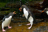 BRD 05 KH0133 01