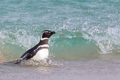BRD 05 KH0153 01