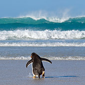 BRD 05 KH0162 01