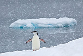 BRD 05 KH0191 01