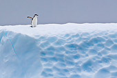 BRD 05 KH0192 01