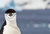BRD 05 KH0194 01