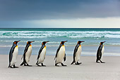 BRD 05 KH0226 01