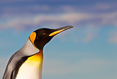 BRD 05 KH0237 01