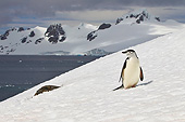 BRD 05 KH0291 01