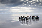 BRD 05 KH0298 01
