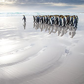 BRD 05 KH0300 01