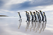 BRD 05 KH0303 01
