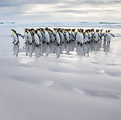 BRD 05 KH0304 01