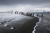 BRD 05 KH0319 01