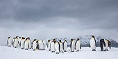 BRD 05 KH0320 01