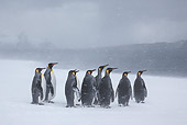 BRD 05 KH0326 01