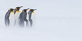 BRD 05 KH0331 01