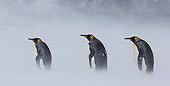 BRD 05 KH0332 01