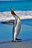 BRD 05 MH0003 01