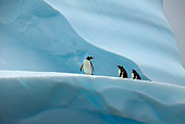 BRD 05 WF0024 01