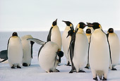 BRD 05 MR0004 01