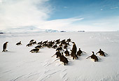 BRD 05 MR0006 01