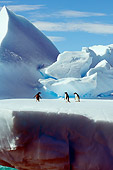 BRD 05 SK0018 01