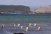 BRD 05 SK0029 01