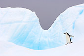 BRD 05 SK0051 01