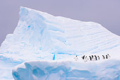 BRD 05 SK0052 01