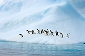 BRD 05 SK0060 01